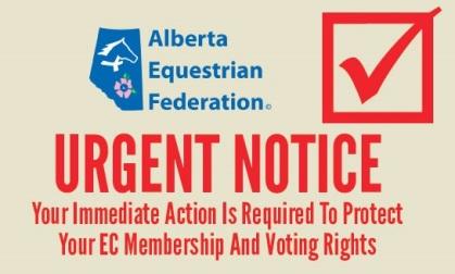 AEF-vote